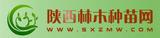陕西林木种苗网